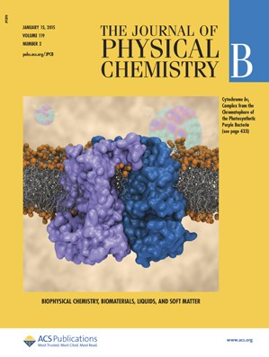 Journal of Physical Chemistry B: Volume 119, Issue 2