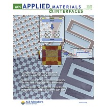ACS Applied Materials & Interfaces: Volume 2, Issue 4