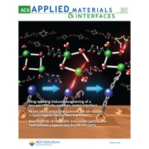 ACS Applied Materials & Interfaces: Volume 2, Issue 5