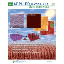 ACS Applied Materials & Interfaces: Volume 2, Issue 6
