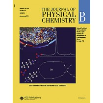 The Journal of Physical Chemistry B: Volume 114, Issue 3