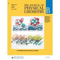 The Journal of Physical Chemistry B: Volume 116, Issue 3