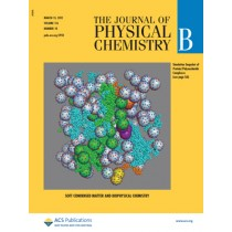 The Journal of Physical Chemistry B: Volume 116, Issue 10