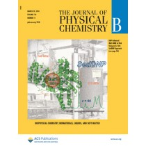The Journal of Physical Chemistry B: Volume 118, Issue 11
