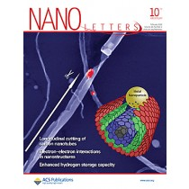 Nano Letters: Volume 10, Issue 2