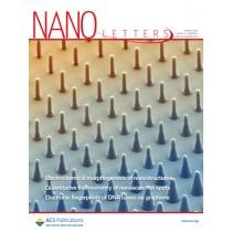 Nano Letters: Volume 12, Issue 2